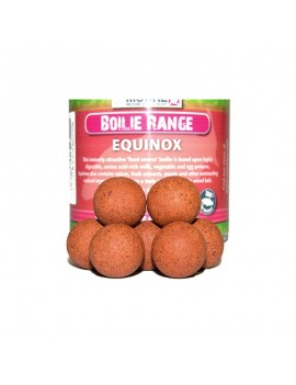 CCMOORE BOILIES POP-UP...